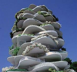 cactushouse